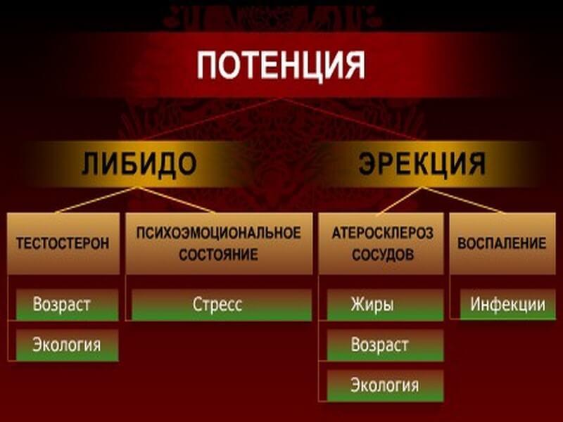 как повысить потенцию народными средствами Челябинская область