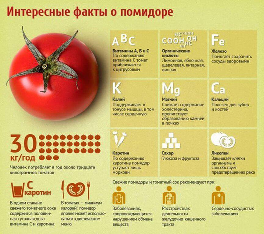 Чем полезны помидоры мужчине