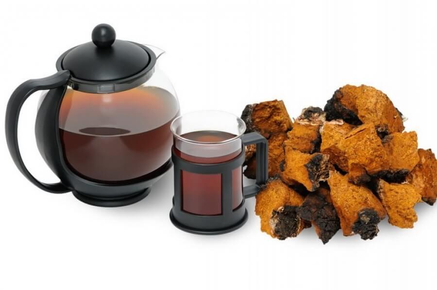 чай из гриба чаги при онкологии