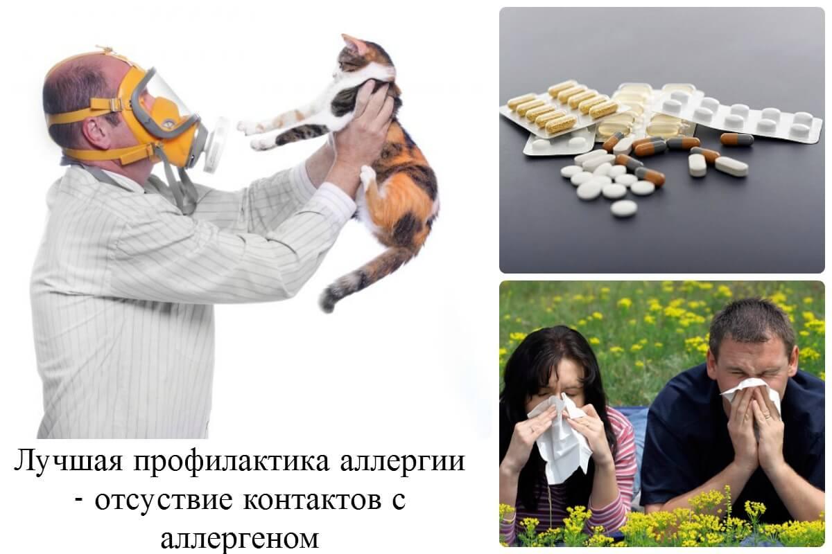 аллергия на резиновые перчатки чем лечить