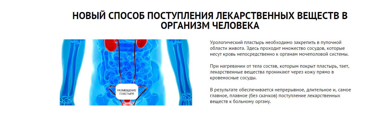 Использование zb prostatic navel plaster
