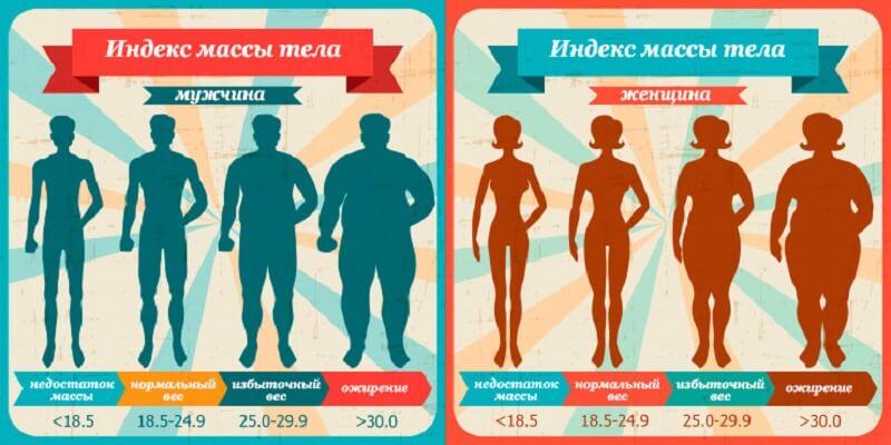 как рассчитывается индекс массы тела