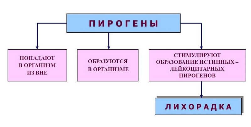 механизм повышения температуры тела