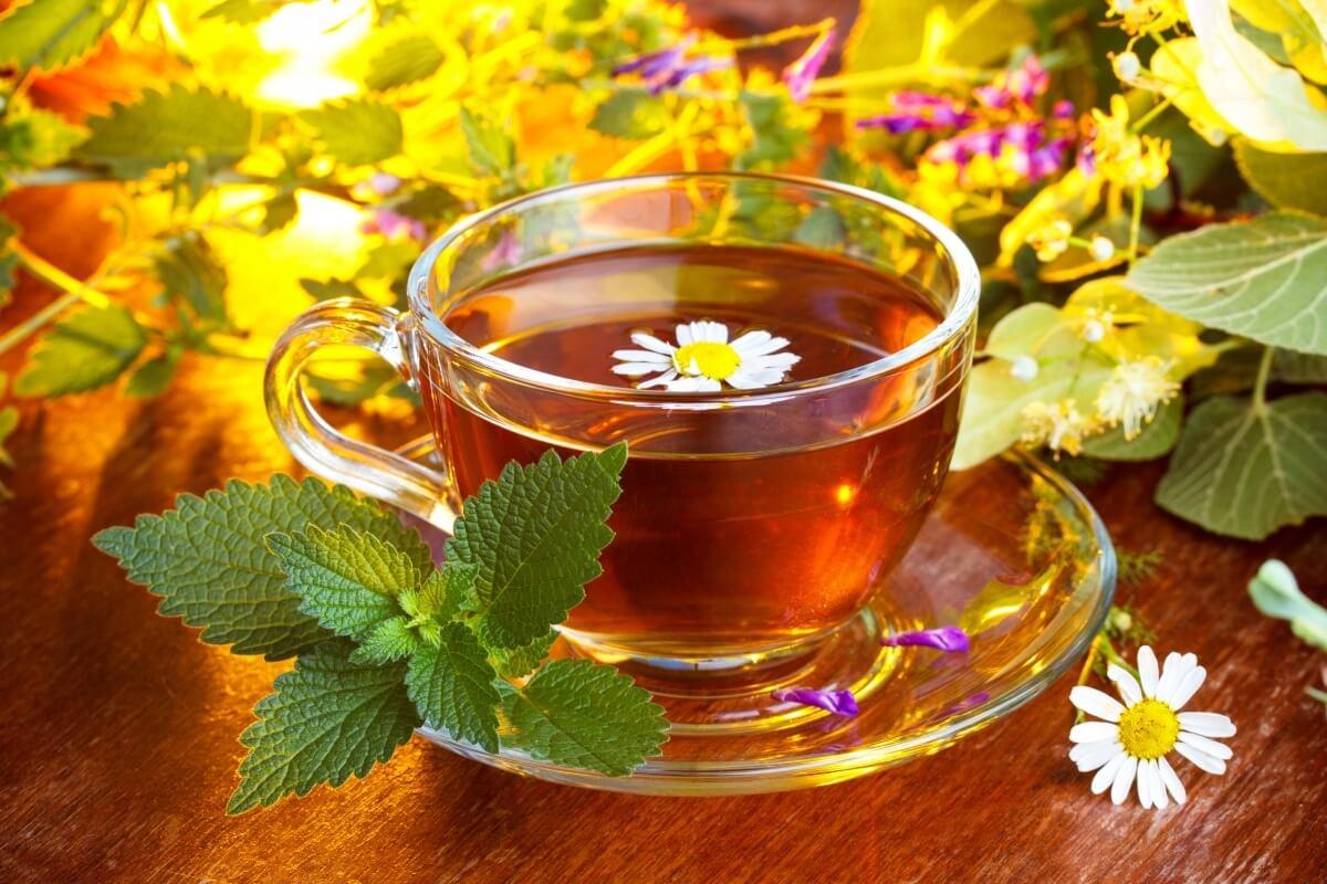Чай для улучшения потенции у мужчин