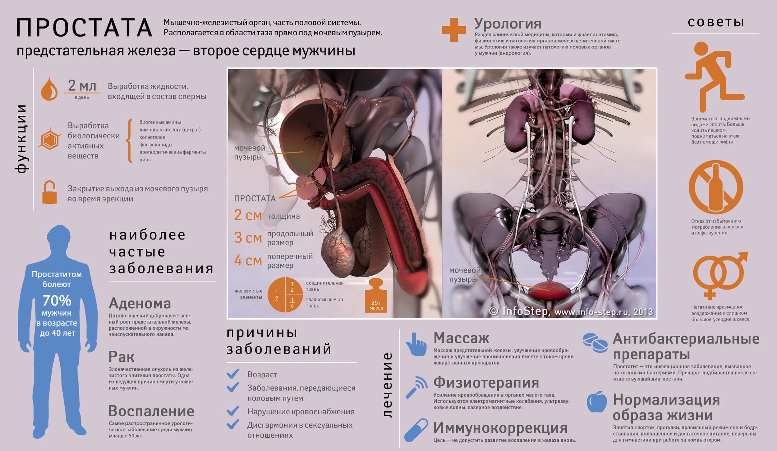 Виды болезней предстательной железы