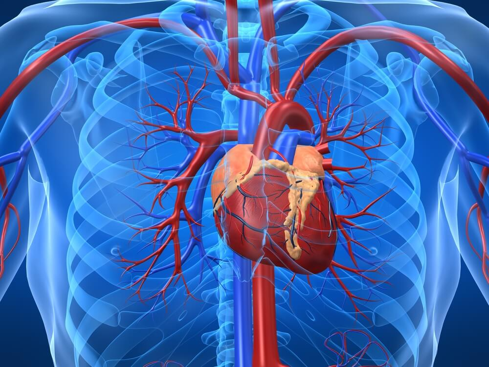 Симптом повышеный гемоглобин при пороке сердца