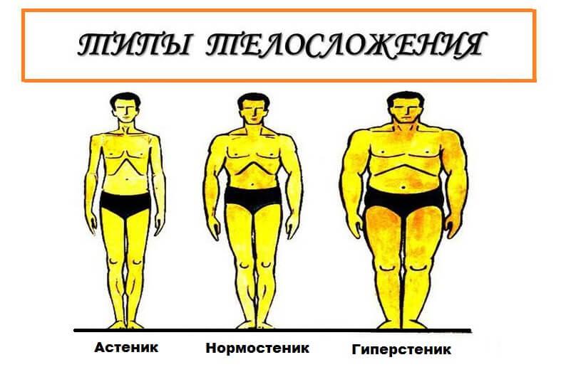типы телосложения мужчины и нормальный вес