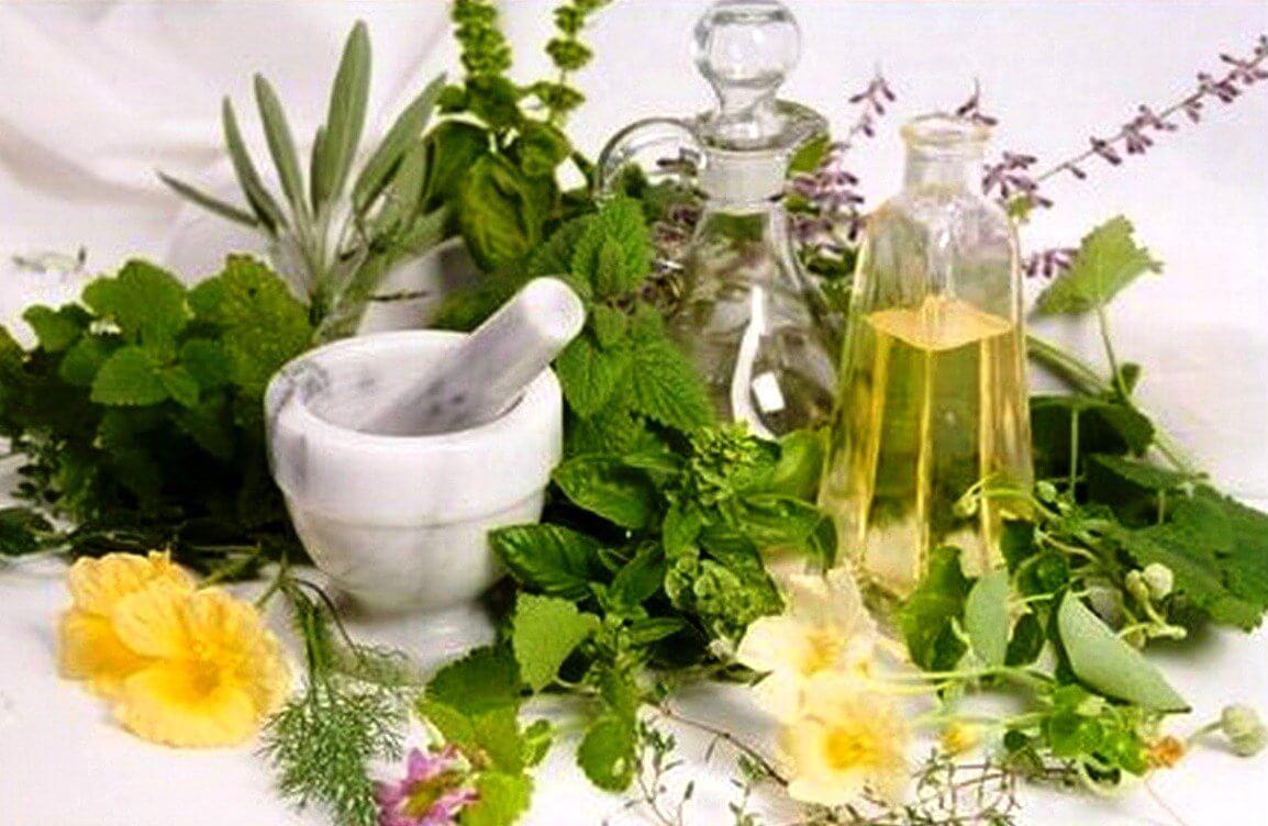 Травы для поднятия иммунитета для женского здоровья антиоксиданты
